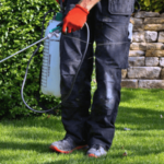 5 Best Insecticide Sprayer In 2021