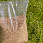 How long is grass seed good for?