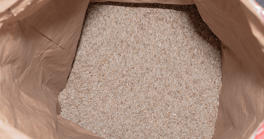 stored grass seed